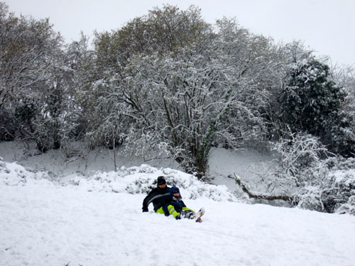 Lil L sledging in Snowy Bath January 2013