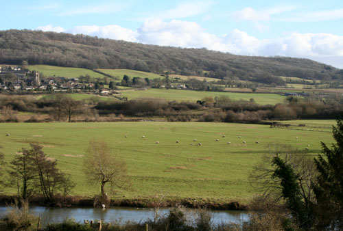 Bathampton Meadows February 2013