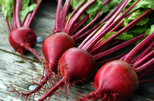 beetroot-uprooted copy