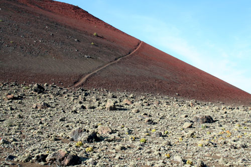 Lanzarote Volcanic National Park 2 - 500