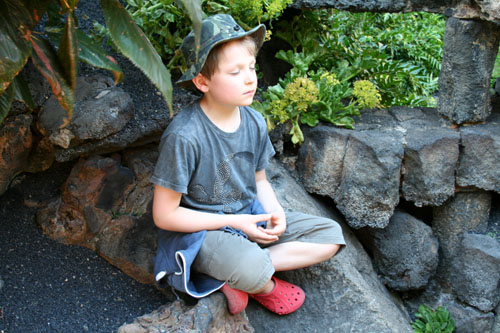 Lil' L Meditating in Lanzarote - 500