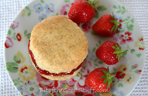Vegan Scone
