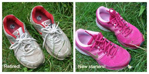 Nike Pegasus Collage
