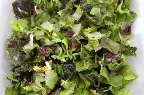 Gem Lettuce 500