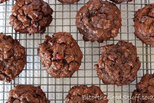 Double Choc Chip Cranberry Oatmeal Cookies