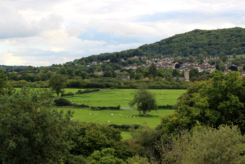 Bathampton Meadows 1 500