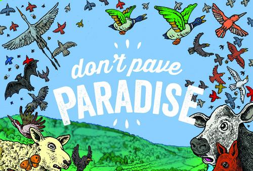 Dont Pave Paradise