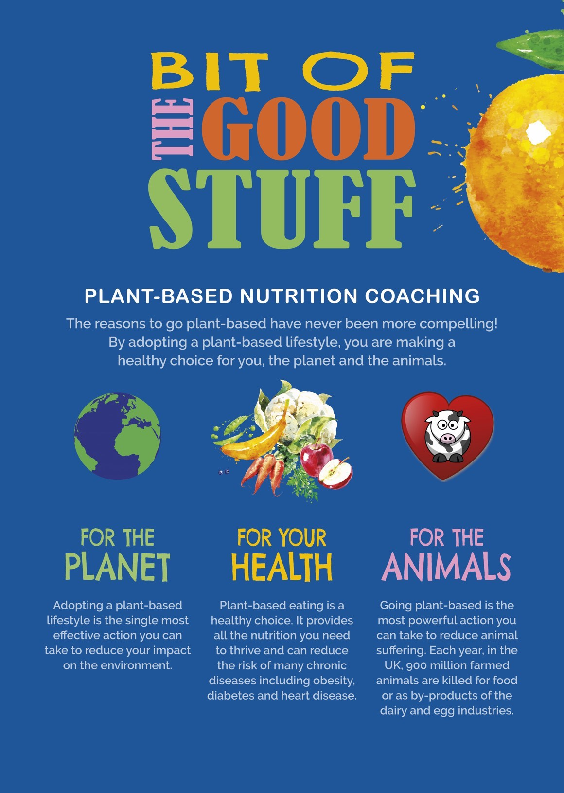 Bit of the Good Stuff Plant-Based Nutrition Coaching